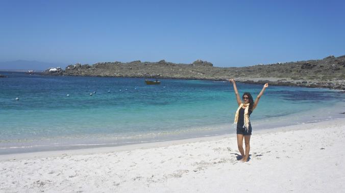 Damas Island, Chile